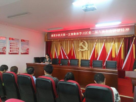 香营乡机关第一支部在党员活动室举办主题党日活动